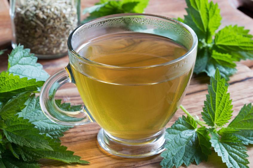 A cup of nettle tea beside fresh nettles